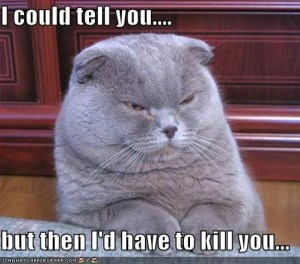 cat I could tell you